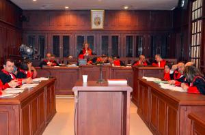 Tribunal Administratif. Tunis. 5/12/2014 Mehdi Bouhalleb   WEBDO.tn