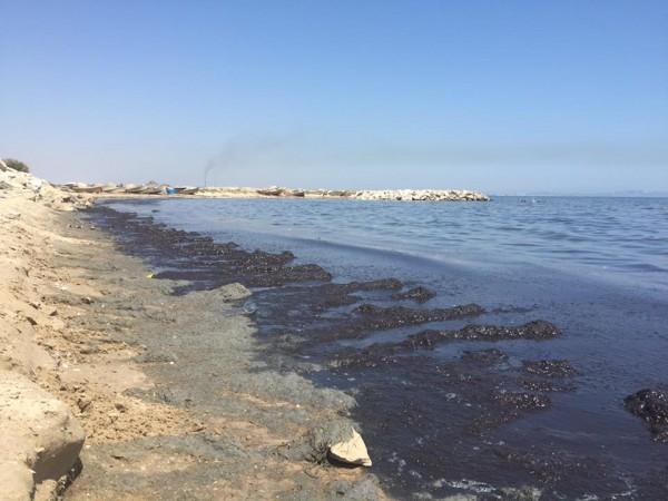 Plage d'Ezzahra | Photo : Mohamed Ali Sghaier
