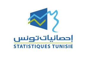 Institut National de la Statistique (INS)