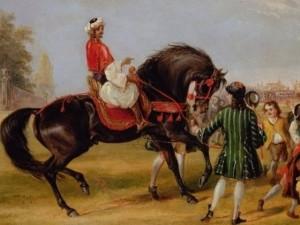Horse Godolphin Arabian