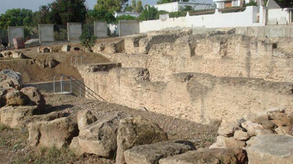 Site archéologique à Carthage Dermech (Photo : La Presse de Tunisie)