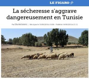 Figaro Tunisie