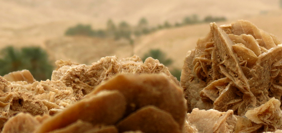 rose-des-sables
